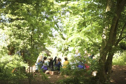 Children learning at Sidcot's Forest School